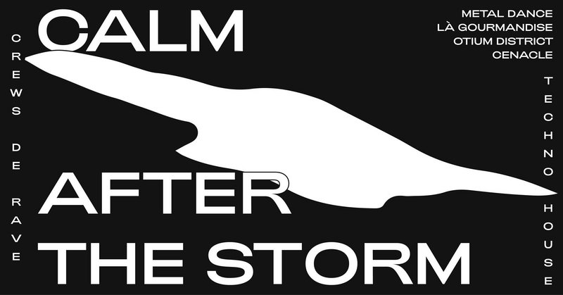 rave | CALM AFTER the STORM