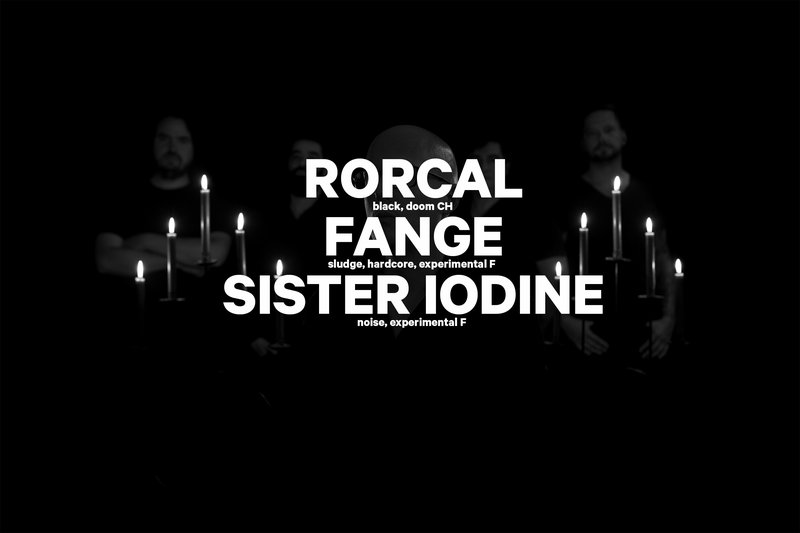HARD DAY'S NIGHT : RORCAL (CH) + FANGE (F) + SISTER IODINE (F)