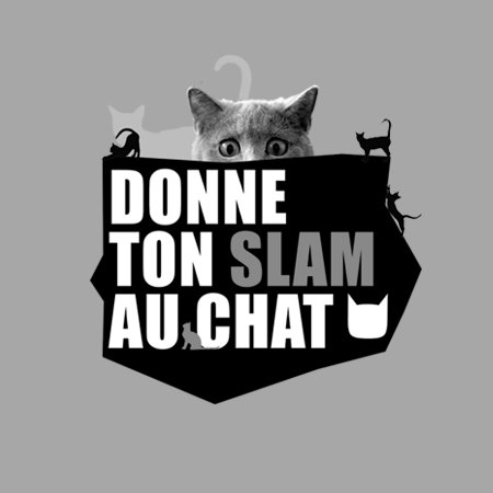 DONNE TON SLAM AU CHAT !